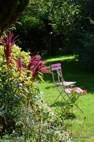 dahlias,massifs refaits,Lalinde,jardin 113.JPG