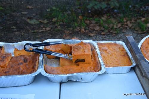 Issigeac,citrouilles ,rhus,automne,jardin 021.JPG