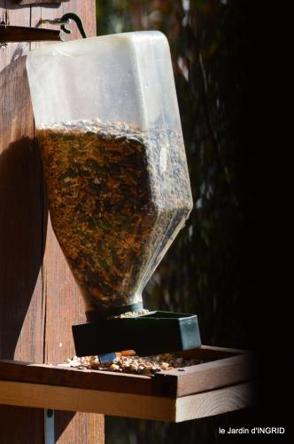 pour les oiseaux,roseraie,enveloppes SOL 063.JPG