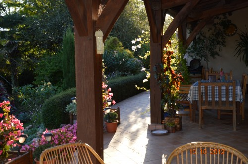 citrouilles,jardin,Combarel 018.JPG