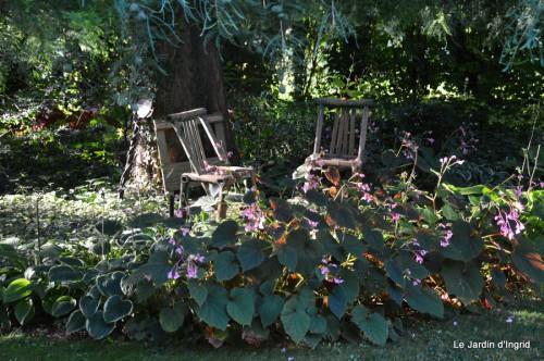 jardin,puces Lasmonzie,asters 009.JPG