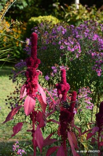 tour de jardin,bouquet,chez Bernadette, 059.JPG