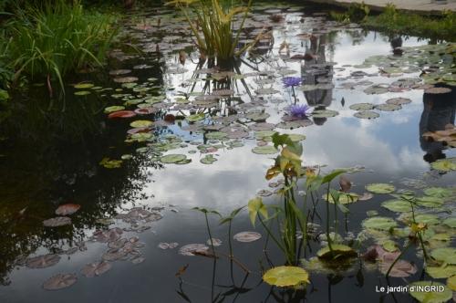 orage,puces,bouquet,Anniv.Ines,Brantome,Jardins d'eau 336.JPG