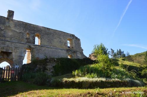 gastéropodes,les cygnes,marché,l'Abbaye Nouvelle,jerdin 034.JPG