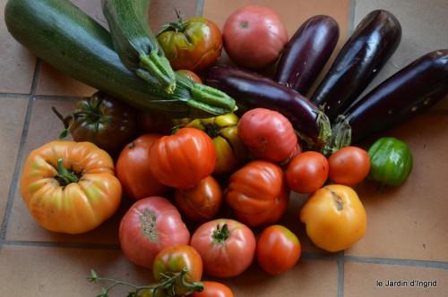 jardin,fruits,Caro,papillons,manthe religieuse,Lalinde 068.JPG