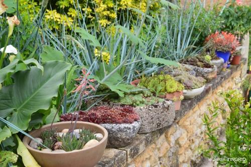 jardin,chez Bernadette,puces,cygnes,pluie 188.JPG