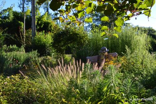 jardin,arrosage,pourpre,bouquet 042.JPG