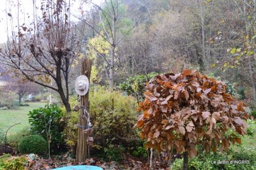 Brouillard,cypres chauve,jardinage 049.JPG