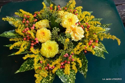 vide jardin,citrouilles,derriere cabane,papillon 015.JPG