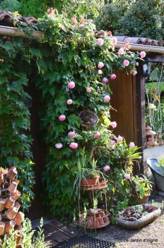 jardin avril et mai, 082.JPG