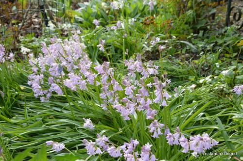 mésanges,escargots,ros. de banks,abeilles,Monpazier,Banes,Forêt 038.JPG