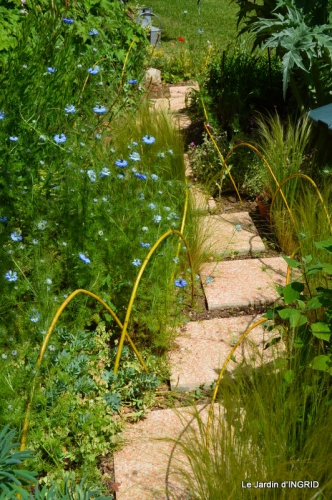 Roses du jardin,soirée Monpazier,puces Eymet 057.JPG