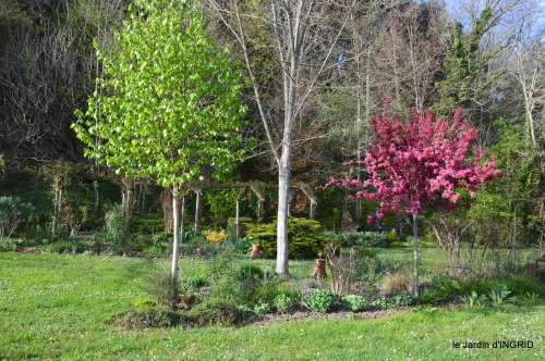 jardin printemps 026.JPG