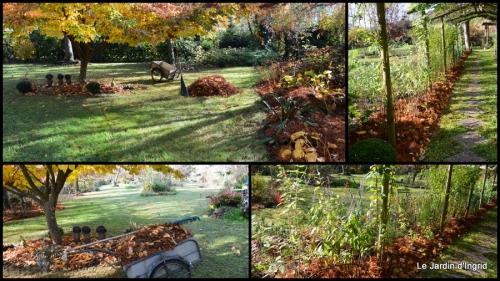 2014-11-21 jardin et travaux d'automne.jpg