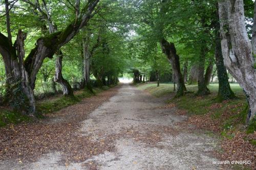 jardin pluie,chateau Losse 121.jpg