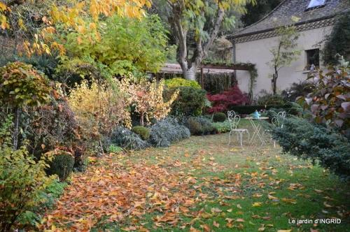 feuillages d'automne et tonte de la pelouse 049.JPG