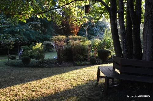 cygnes,jardin,apres la tonte 109.JPG