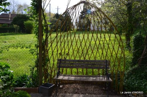 jardin avril,tulipes pivoine,iris d'eau,chenilles 042.JPG