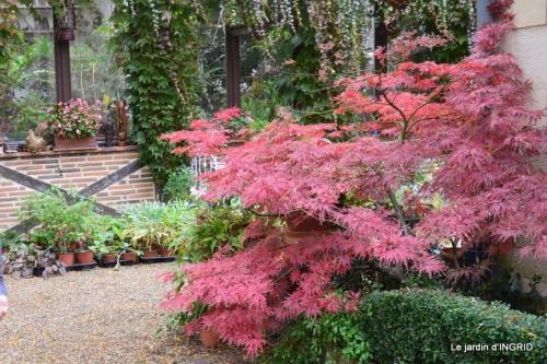 canal automne ,jardin,Ines 083.JPG