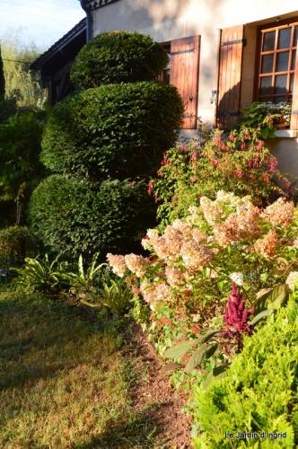 mon coin,Monique,les oies,mon jardin 007.JPG