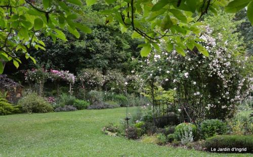 Arya,roses,cygnes,coulobre,nigelles,abeille,cabane 137.JPG