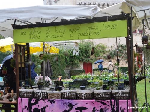 Neuvic,jardin,champignons canal 178.JPG