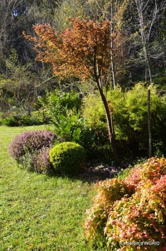 jardin printemps 042.JPG