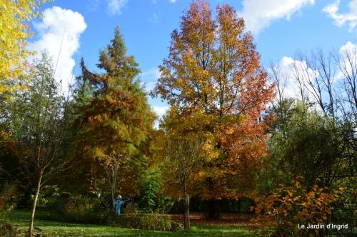 jardin serre bucher automne 046.JPG