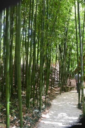 bambous Roque Gageac,jardin,bouquet 137.JPG