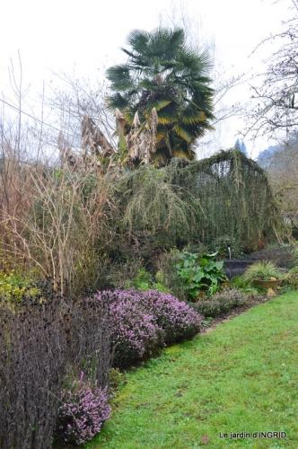 jardin d'hiver 054.JPG