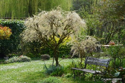 printemps,lilas,tontine 010.JPG