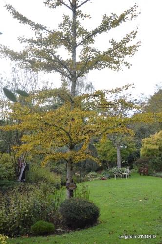 citrouille fleurie,décos jardin,automne 013.JPG