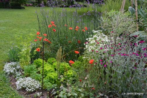 jardin,visites enfants 025.JPG