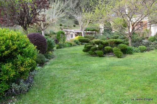 paquerettes,arums,laurier palme,jardin 055.JPG