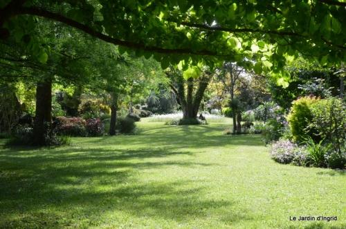 jardin avril et mai, 111.JPG