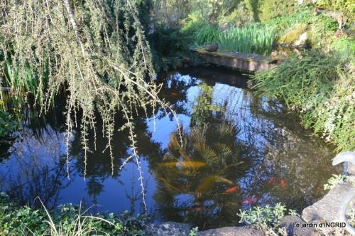 plans d'eau,jardin 018.JPG