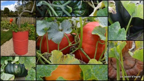 2014-09-24 jardin de Marie,éoliennes,Ciron,Angles,Fontgombault2.jpg