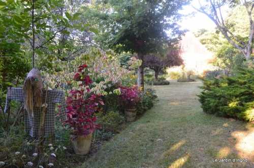 mon coin,Monique,les oies,mon jardin 020.JPG