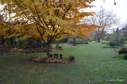 jardin propre,bruyères 024.JPG