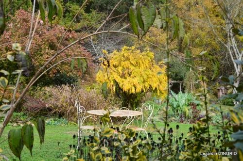 troc,automne,serre 023.JPG