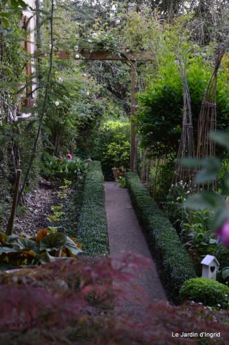 canal,fleurs blanches,marguerites,LE FLEIX,osier 229.JPG