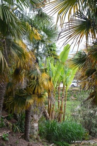 la Roque Gageac,Ines,jardin 086.JPG