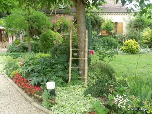 jardin 2010 2011 les plus belles 057.JPG