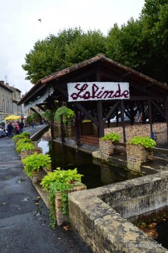 retombantes,puces Lalinde Trémolat,vieilles motos,gouttes,jardin 027.JPG