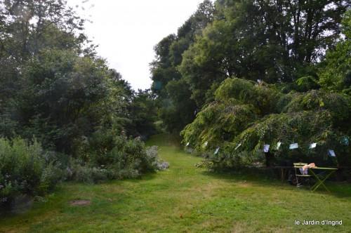 asters,bouquets,jardin de Lilianne 082.JPG