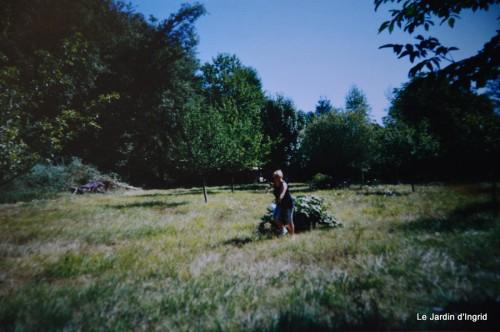 jardin,le cypres chauve,puces Mouleydier,vieilles photos 142.JPG