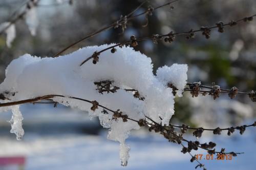 neige sous le soleil 051.JPG