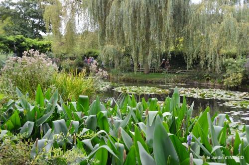 bouquet,jardin de Monet,les vaches,Pourville sur mer 100.JPG