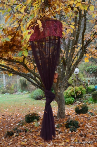 Brouillard,cypres chauve,jardinage 034.JPG