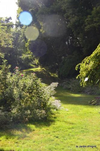 asters,bouquets,jardin de Lilianne 101.JPG
